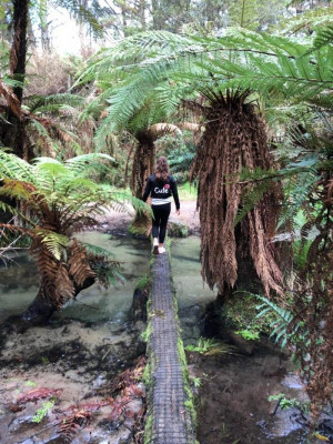 Log Walking by Kaytalia (Age 10), Ngongotaha Primary, Rotorua